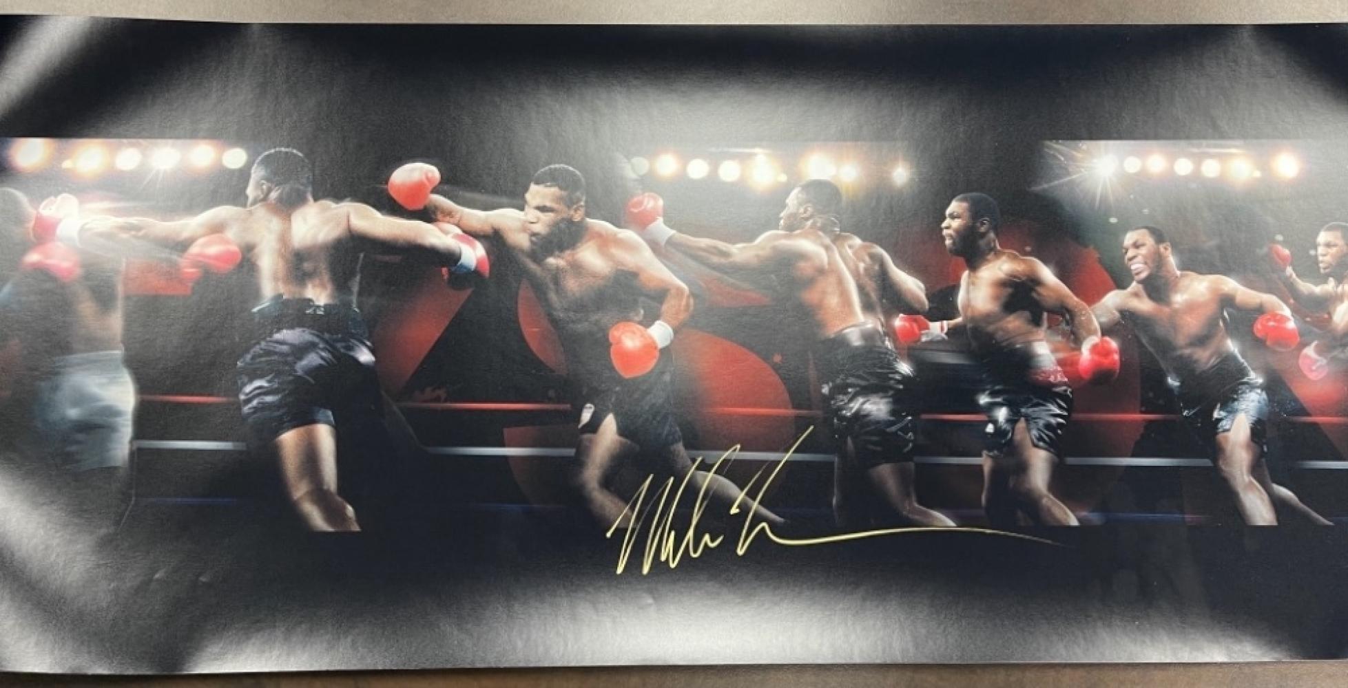 "Mike Tyson ""Round House"" 36x15"
